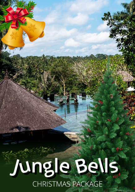 Jungle Bells Christmas Package
